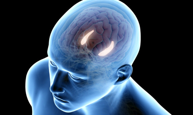 Age-associated memory impairment reversed with PEMF therapy