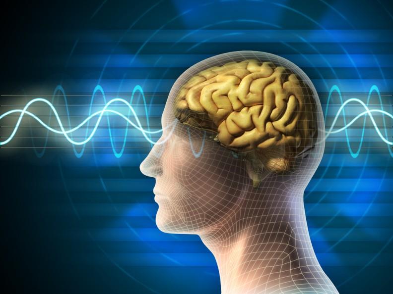 seizures and epilepsy - dr.pawluk, Skeleton