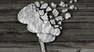 PEMF and TBI/concussion